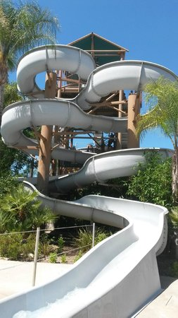 Six Flags Hurricane Harbor : 14