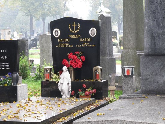 Central Cemetery (Zentralfriedhof): A snapshot of one of the gravestones among the thousands