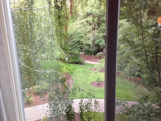 Plaza Inn & Suites at Ashland Creek: View from room 148