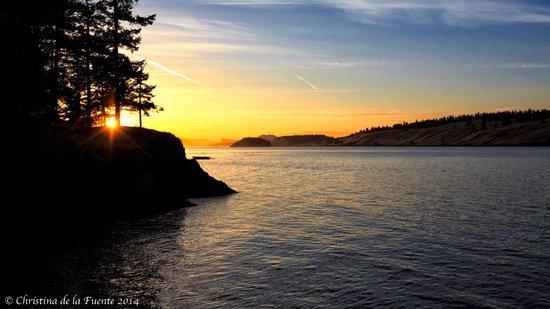Lonesome Cove Resort: Amazing sunset from Resort