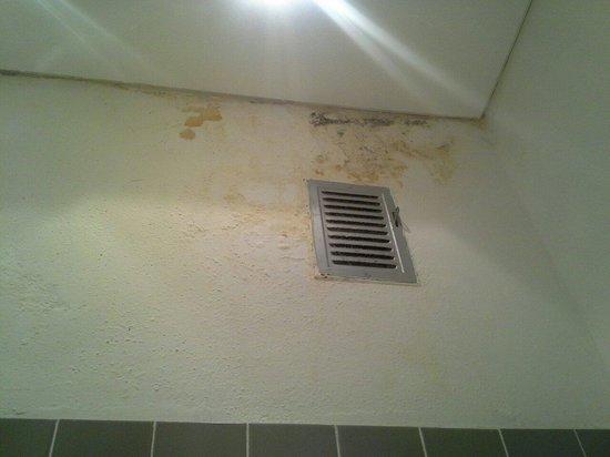 Hotel Negresco: Il muro del bagno