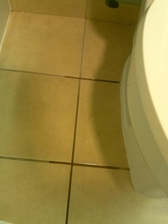Hampton Inn & Suites Miami-Doral/Dolphin Mall: leaky toilet