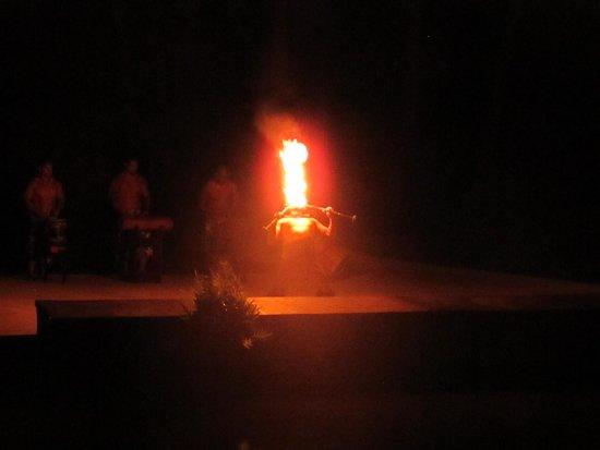 Smith Family Garden Luau: Fire dancer