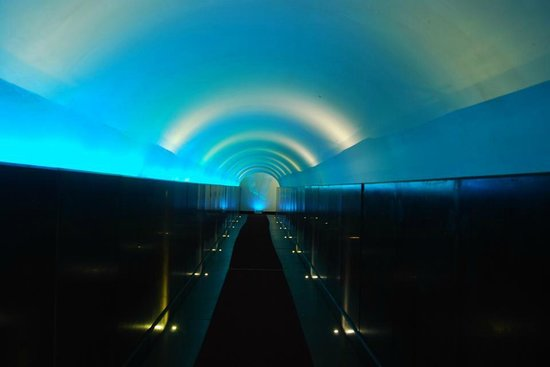 Vis a Vis Hotel : Entrance tunnel