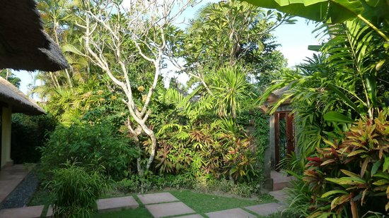 The Pavilions Bali : Onze prive tuin