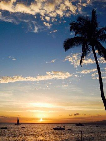 The Westin Maui Resort & Spa : ��❤️��