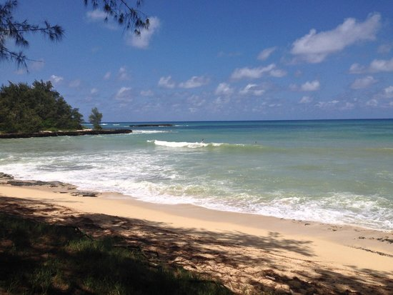 Turtle Bay Resort: Bay