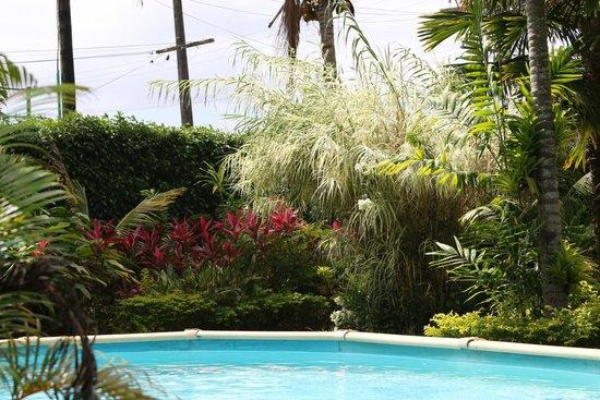 Samoan Outrigger Hotel: Pool