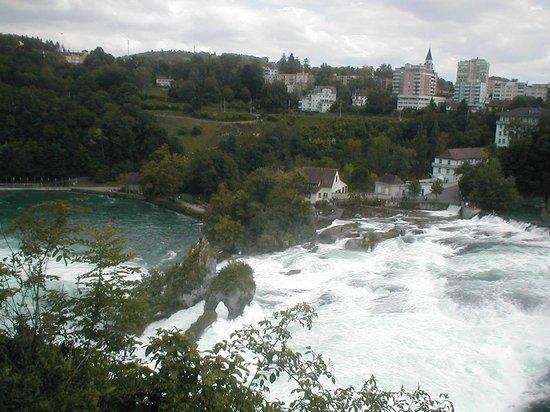 Rhine Falls : Cascate del Reno