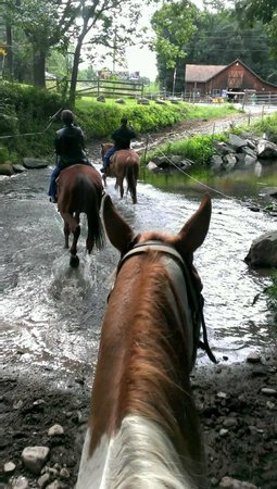 Mountain Creek Riding Stables: Crossing the creek