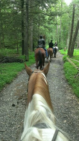 Mountain Creek Riding Stables: Riding the trail