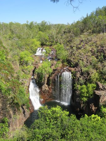 Jump Tours - Day Tours: Florence Falls in Litchfield