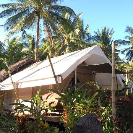 La Cocoteraie Ecolodge: La cocoteraie
