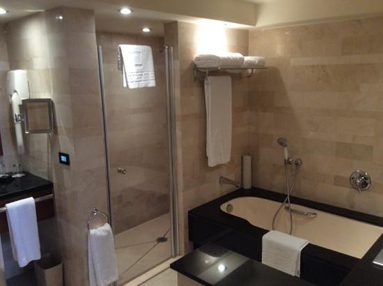 The King David: Mini suite #541 bathroom