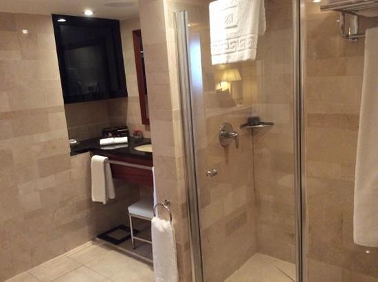 The King David : Mini suite #541 bathroom