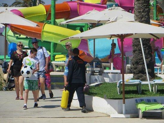 Thalassa Sousse Resort & Aquapark : Bug Spraying