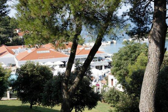 Hotel Pineta: Вид из номера (на отель Бельведер, там находится открытый бассейн)