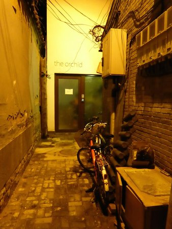 The Orchid Hotel: Don't Let the Walk Down the Alley Fool You, This is a Nice Place