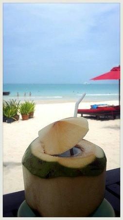 Eat Sense Beach Restaurant Samui : Coconut on the beach
