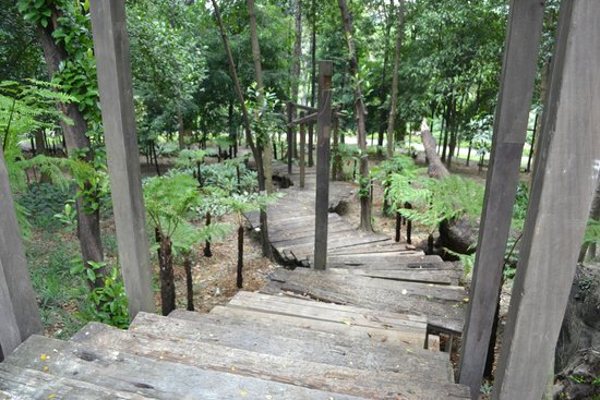 The Hibiscus Park: Wooden stairs