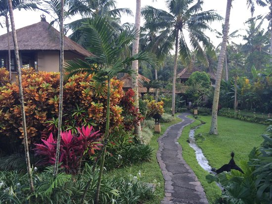 Villa Semana: Beautiful gardens