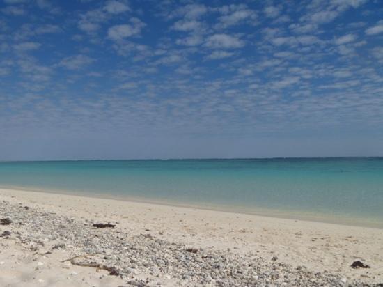 Turquoise Bay Exmouth: Turquoise Bay, Exmouth