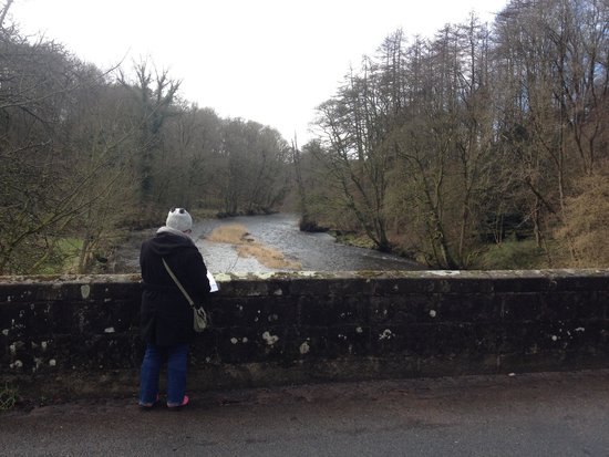 Ribblesdale Park: Walking in local area