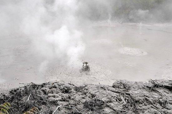 Wai-O-Tapu Thermal Wonderland: Mud pools
