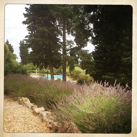 La Bastide du Pin : Garden and pool