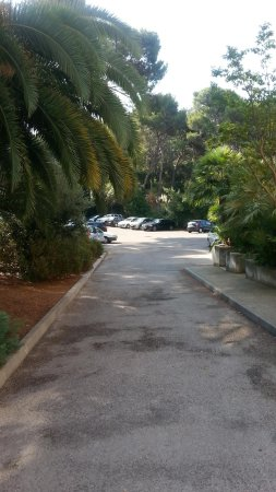 Hôtel Club Vacanciel Carqueiranne : parc 3