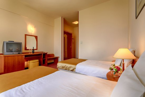 Ana Airport Hotel : Twin Room