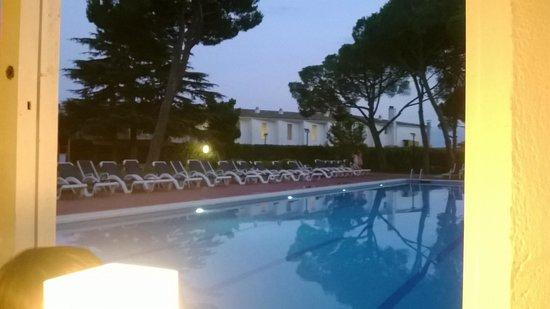Hotel Alga : piscine avec transat