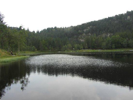 Mount Floyen and the Funicular (Floibanen): Kayak lake