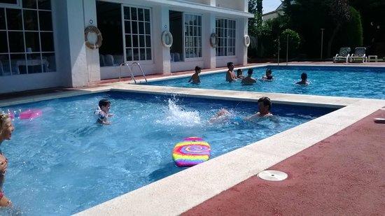 Hotel Alga : restaurant qui donne sur la piscine