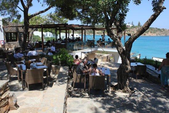 Minos Beach Art hotel: Terpsis