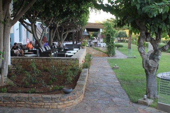 Minos Beach Art hotel: main bar and restaurant