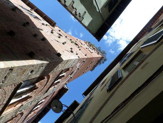 Guinigi Tower: Torre Guinigi