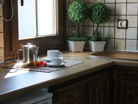Hotel Castillio : Kitchen in the room