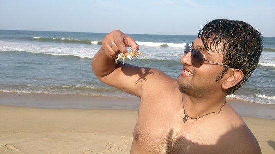 MGM Beach Resorts: Crab ;)