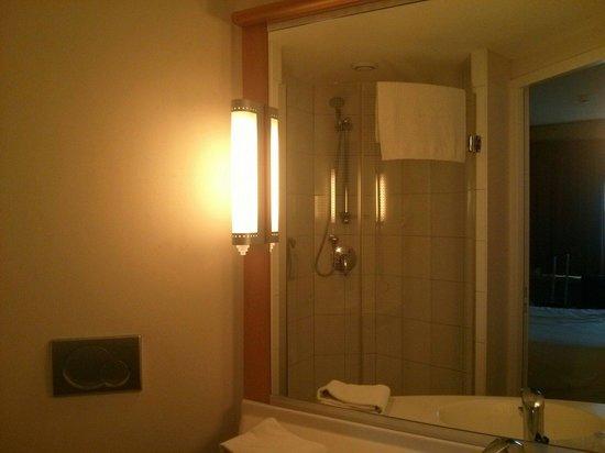 Ibis Amsterdam Centre: Banheiro