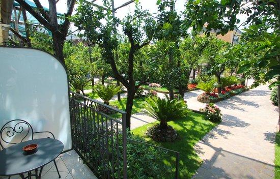 Hotel Florida: Garden Area