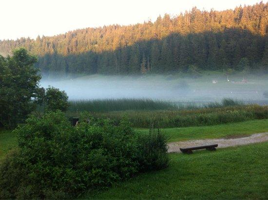 Randonnées Autour du Lac de Lamoura : Le lac brumeu