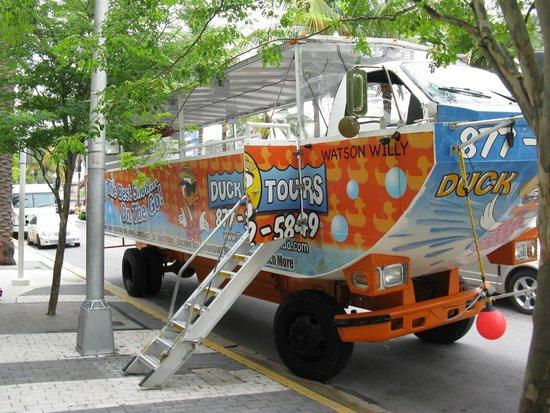 Duck Tours South Beach Le Drôle D Engin