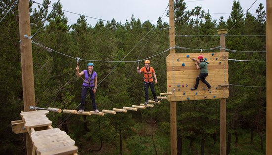 Delphi Resort : Zip line, climb, abseil, tunnel and swing through our GoZip Forest Park