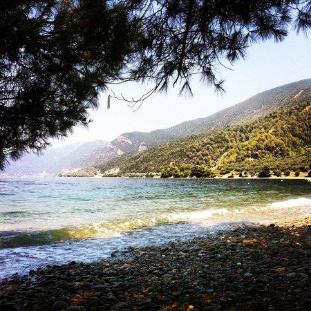 Sungate Beach