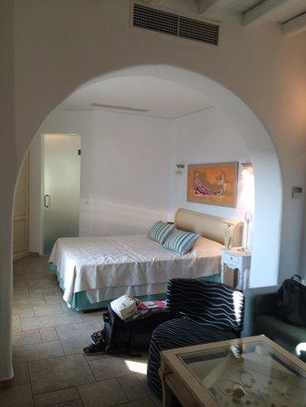 Arte & Mare Elia Mykonos Suites : Room
