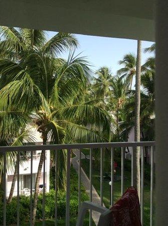 ClubHotel Riu Bambu : hotel grounds