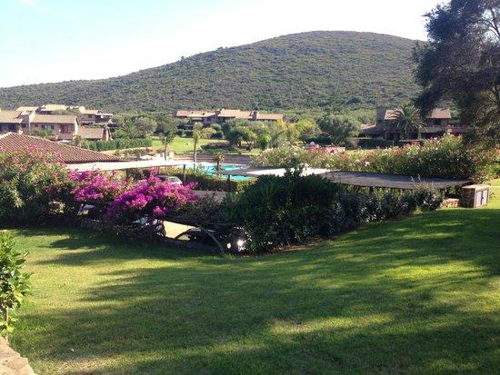 Residence Marineledda & Vela Blu: Giardino davanti alla camera