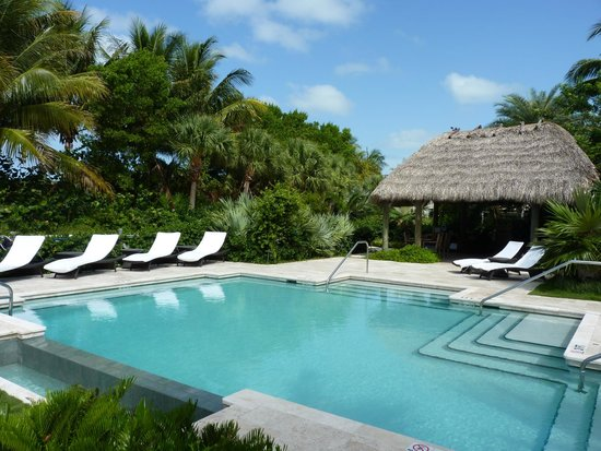 Ocean House : Relax By The Pool or Under the Shade!
