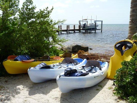Ocean House : Kayaks on offer!